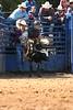 Liberty MS Rodeo 09 09 2007 B 104