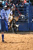 Liberty MS Rodeo 09 09 2007 B 086