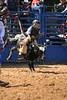 Liberty MS Rodeo 09 09 2007 B 091