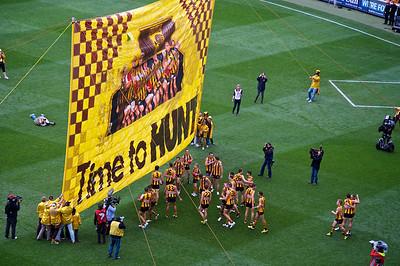 Hawthorn banner
