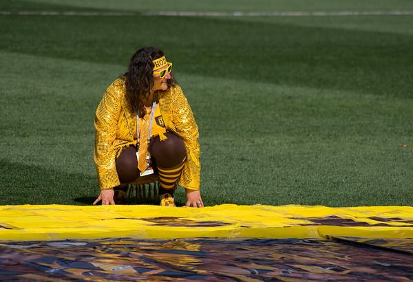 Preparing the banner I