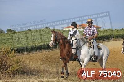 ALF 75040