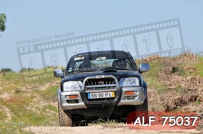 ALF 75037