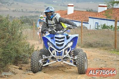 ALF75044