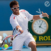 2010 Australian Tennis Open - TIPSAREVIC, Janko (SRB) vs HAAS, Tommy (GER) [18] - [photographer] Natasha Peterson - 2526