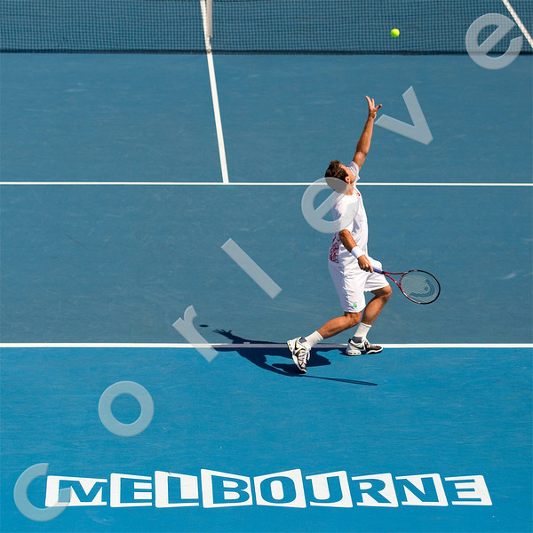 2010 Australian Tennis Open - TIPSAREVIC, Janko (SRB) vs HAAS, Tommy (GER) [18] - [photographer] Natasha Peterson - 2396