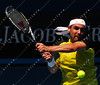 2010 Australian Tennis Open - BAGHDATIS, Marcos (CYP) vs FERRER, David (ESP) [17] - [photographer] Mark Peterson - 2904