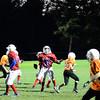 Eagles_last_game-159