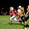 Eagles_last_game-247