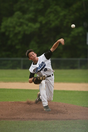Baseball 20100504