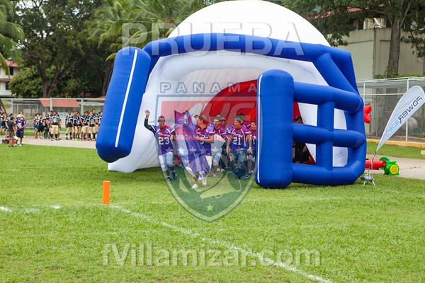 AYF 2012, fvillamizar.com © 2012 AYF-1208191213(6192)-0403
