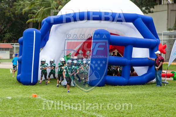 AYF 2012, fvillamizar.com © 2012 AYF-1208191215(6229)-0475