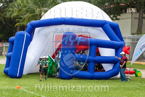 AYF 2012, fvillamizar.com © 2012 AYF-1208191215(6228)-0474