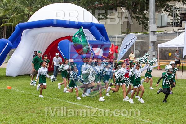AYF 2012, fvillamizar.com © 2012 AYF-1208191215(6238)-0486