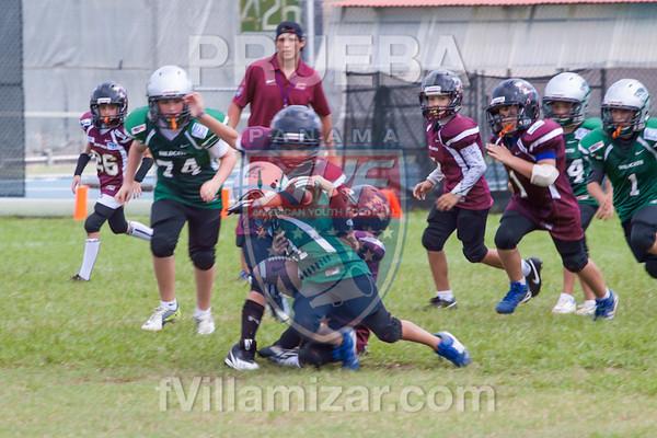 AYF 2012, fvillamizar.com © 2012 AYF20120826142928_(8297)