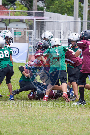 AYF 2012, fvillamizar.com © 2012 AYF20120826131100_(8253)