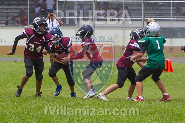 AYF 2012, fvillamizar.com © 2012 AYF20120826130806_(9555)