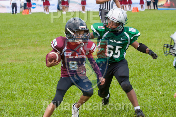 AYF 2012, fvillamizar.com © 2012 AYF20120826132234_(8288)