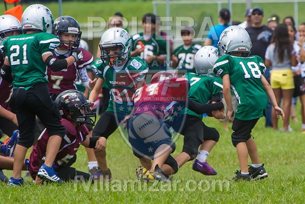 AYF 2012, fvillamizar.com © 2012 AYF20120826131135_(9592)