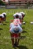 AYF 2012, fvillamizar.com © 2012 AYF20120826103454_(7675)