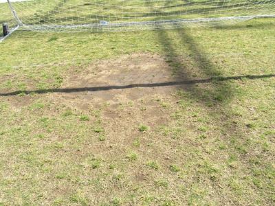 Soccer bare spots 2012