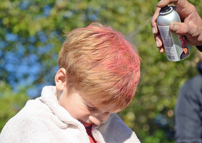 "Carson Cinqmars, 6 of Dalmatia, has his hair spray painted pink by Mike Kisella, of Dornsife, before his U-8 AYSO soccer game in Selinsgrove on Saturday morning. The team, called the ""Firecrackers"" painted thier hair pink in support of Breast Cancer Awareness Month."