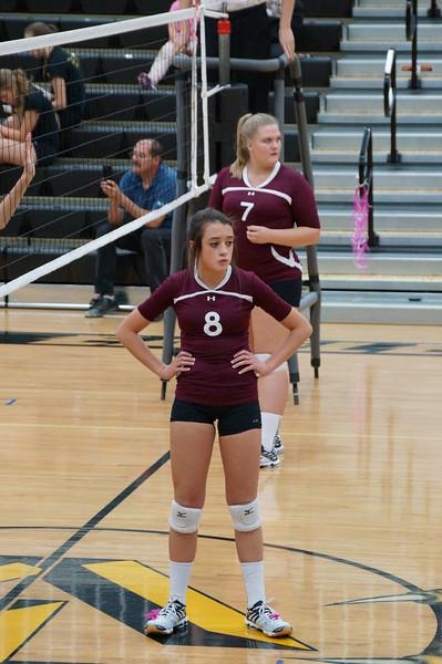 Abby NHS Volleyball 2015 Freshman