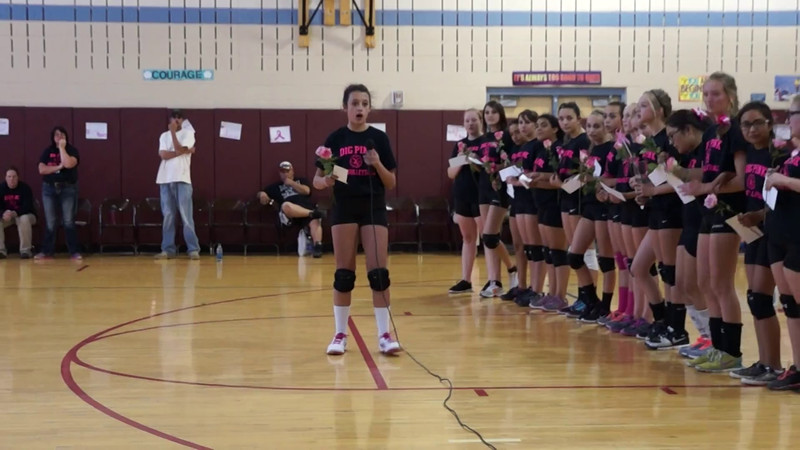 Abby Speaks at DigPink VBall game 2014