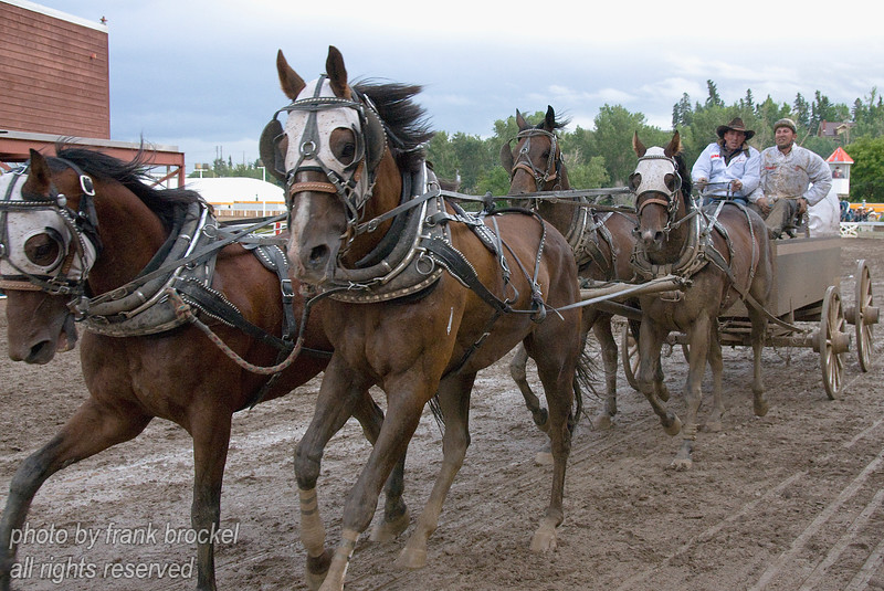 The Rangeland Derby / Chuckwagon Races at the Calgary Stampede