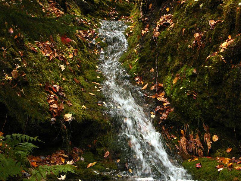 ya ya. a waterfall. ooooh big deal.