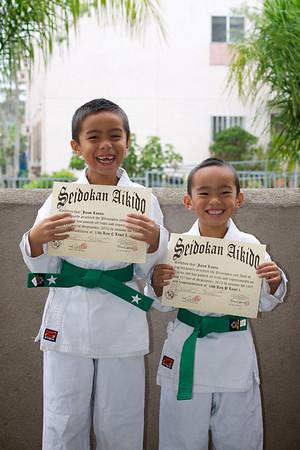 Aikido - Green Belt