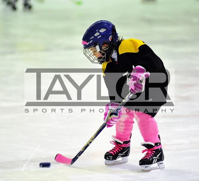 Alex's Hockey 2013