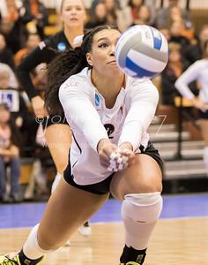 FloSports: FloVolleyball NCAA Women's Championship-Austin Regional