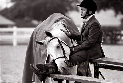 Jessica Frankowic with her horse Nightwing share a moment after competing in a horse show in Tampa, Florida