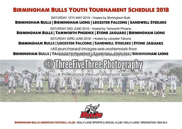 Bulls Posters - ThreeFiveThreePhotography
