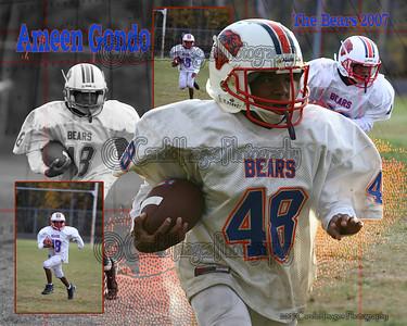 Bears 46-16