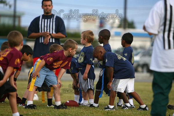 American Youth Football and Cheerleading of Fairbaks Alaska