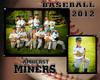 steele amherst miners_edited
