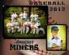 steele amherst miners
