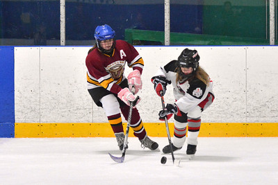 2013-12-27 Vancouver Angels A vs. Surrey Falcons C1 Female Bantam Hockey