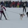 Husky_Race_Les-Fourgs_24022013_0004
