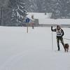 Husky_Race_Les-Fourgs_24022013_0008