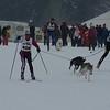 Husky_Race_Les-Fourgs_24022013_0003