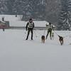 Husky_Race_Les-Fourgs_24022013_0007