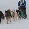 Husky_Race_Les-Fourgs_24022013_0019