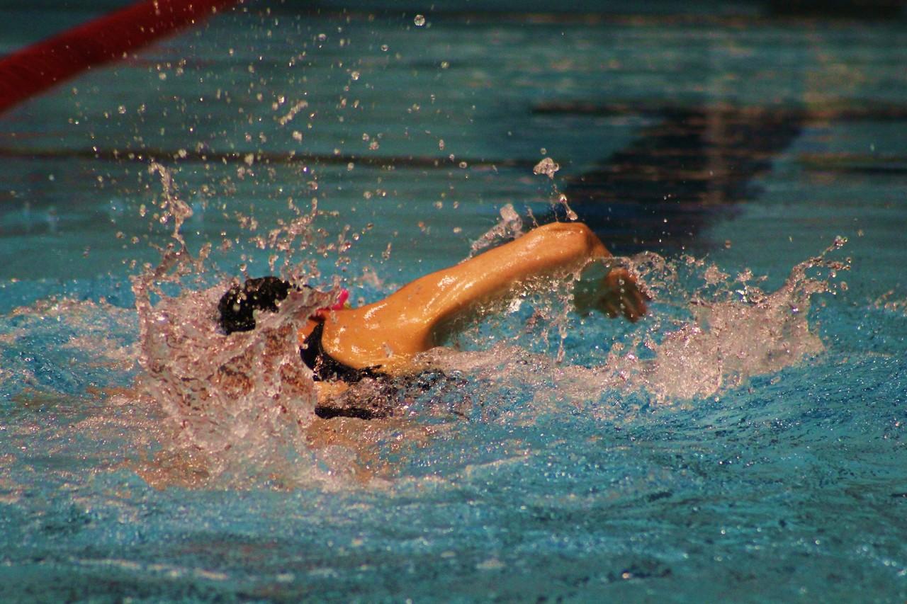 SOMA Aquatics 33