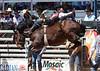 20130310_Arcadia Rodeo-10