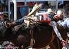 20130310_Arcadia Rodeo-11