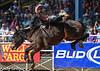 20130310_Arcadia Rodeo-19