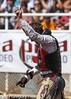 20130310_Arcadia Rodeo-17